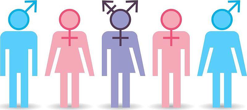 TRANSEXUALIDAD. DEFINICIONES Y CONCLUSIÓN PARA REFLEXIONAR.